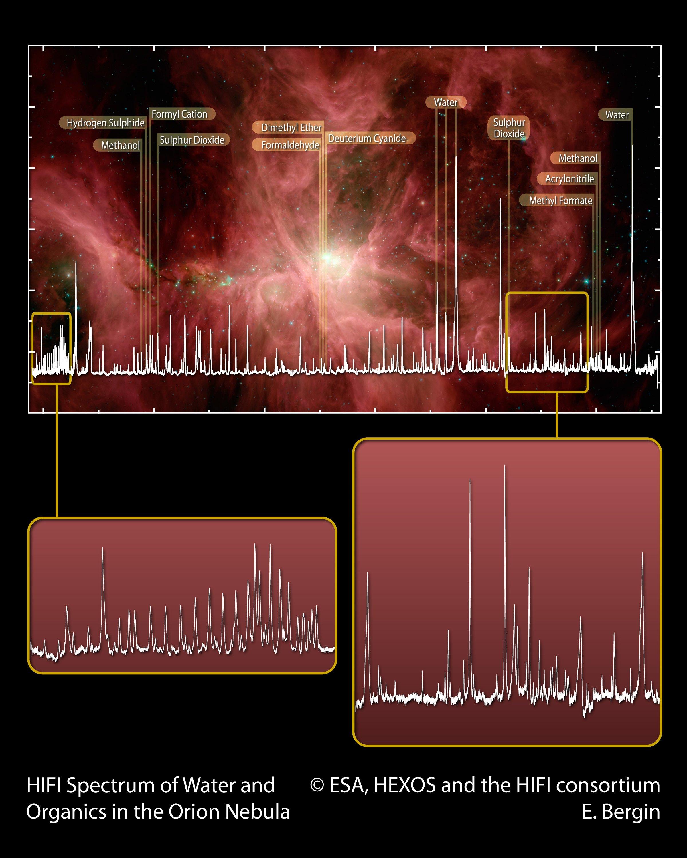 Spectre HIFI de l'eau et de molécules organiques dans la Nébuleuse d'Orion